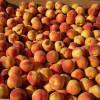Grilled Peach Melba