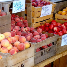 Fruit Buckle