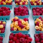 Raspberry Sour Cream Tart