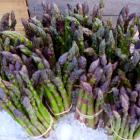 Marinated Asparagus