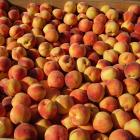 Quick Peach Cobbler