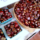 How to Prepare a Chestnut