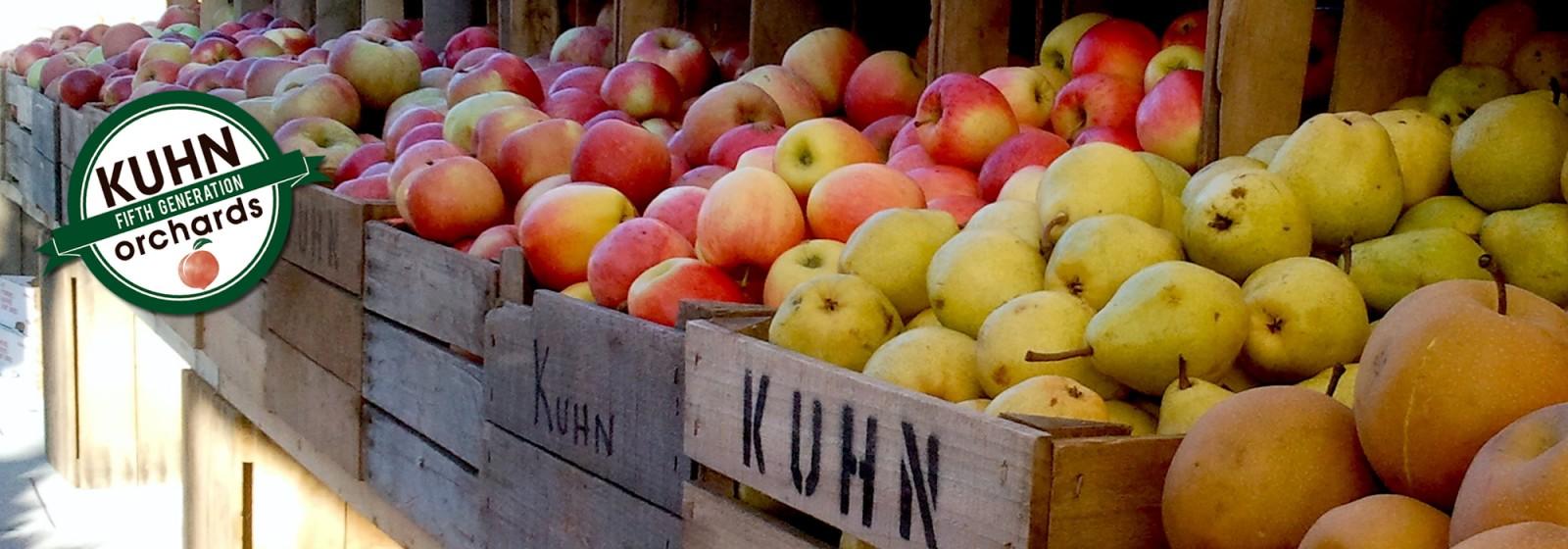 Farmers-Market-Apples-2